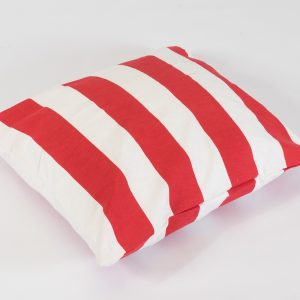 Scatter cushion in red stripe