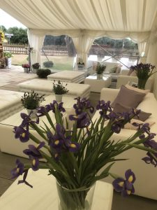 Flowers and scatter cushions at a garden party
