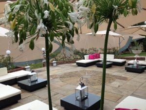 garden umbrellas and rattan sofas for hire
