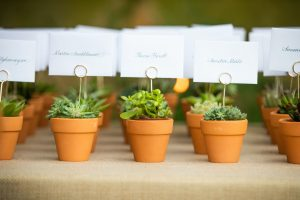 wedding furniture hire: succulent place markers